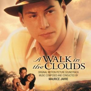 Walk_in_clouds_LLLCD1199