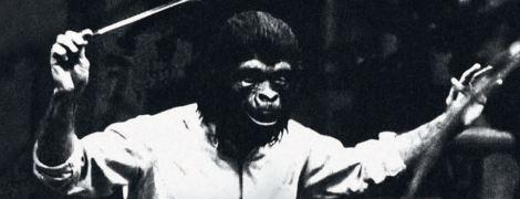monkeysmith