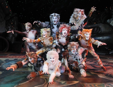 Cats-the-Musical-Broadway-in-Chicago-010