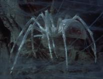 Krull_Spider