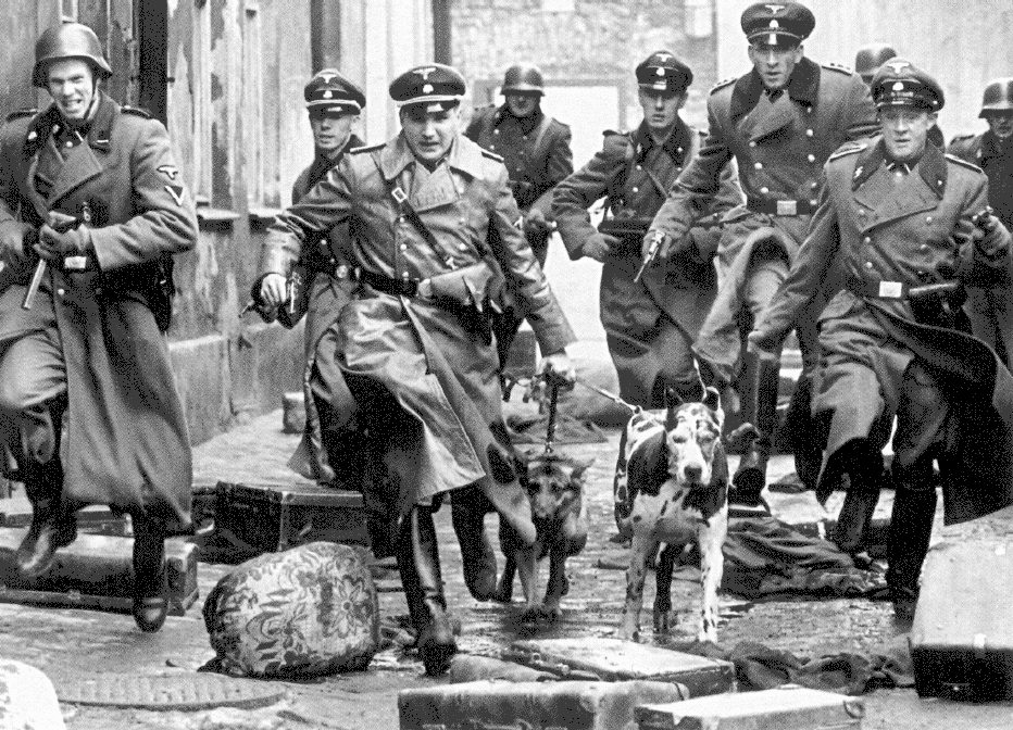 could the holocaust happen again essay Most americans (58 percent) believe the holocaust could happen again and half  think it could happen in the united states, a survey released.